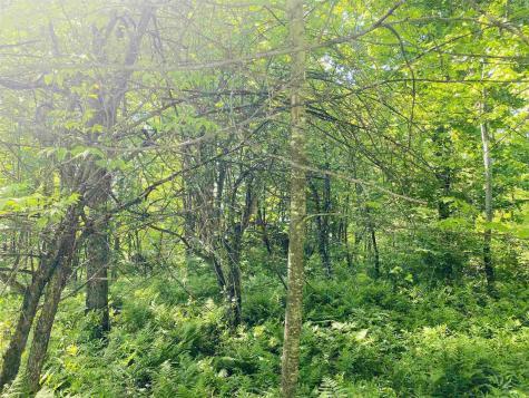 135 May Pond Road Barton VT 05822