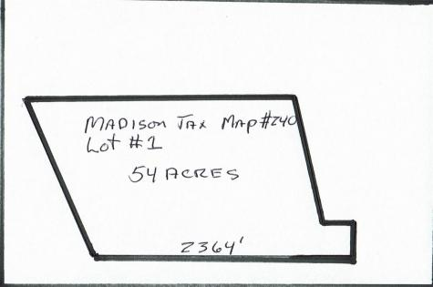 Map 240 Lot #1 Off Danforth Road Madison NH 03849