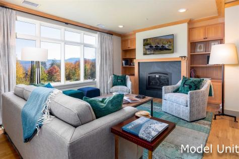 580 Trapp Hill Road Stowe VT 05672