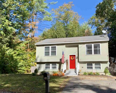 126 New Hampshire Drive Webster NH 03303