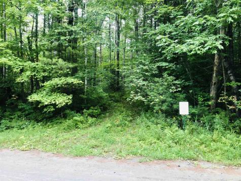Fish Hill Road Randolph VT 05060