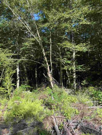 Beaver Brook, Lot 185 Road Washington NH 03280