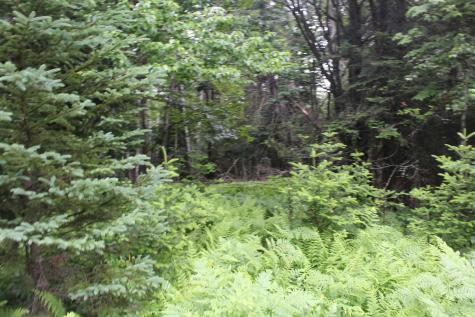 96 Vista Way Pittsburg NH 03592