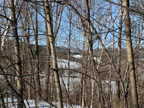 6 Highland Avenue Woodstock VT 05091