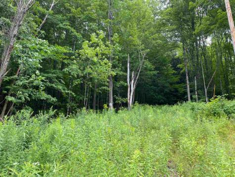 Lot 4 TAC Heights Moretown VT 05660