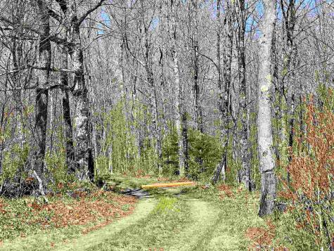 Lot 2 Rodin Road Averill VT 05901