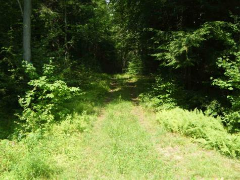 Lot 2 Aldrich Road Whitingham VT 05361