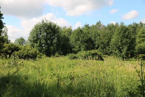 Lavigne Hill Hinesburg VT 05461