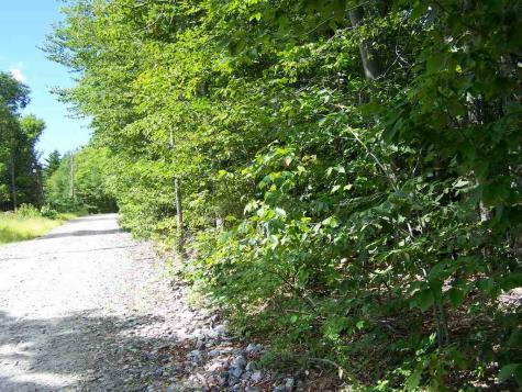 Bailey Hill Road Groton NH 03241