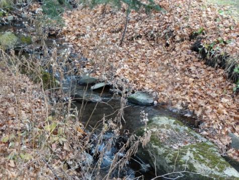 13 Toad Pond Road Morgan VT 05853