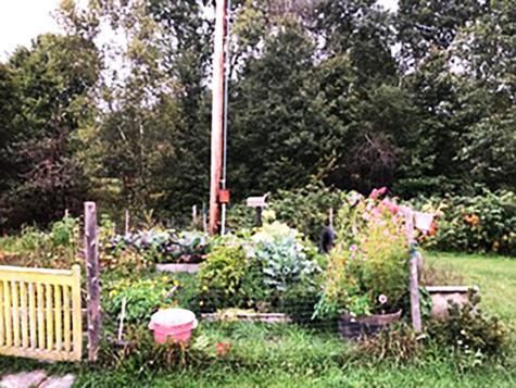 792 Cemetery Road Johnson VT 05656