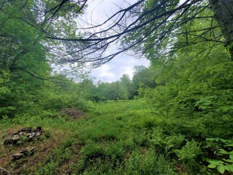 1651 Townshend Dam Road Wardsboro VT 05355