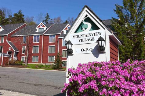 3 J Mountainside Village Dover VT 05356