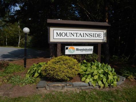 251 Mountainside Drive Warren VT 05674