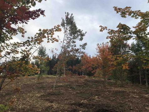 672 Cemetery Ridge Greensboro VT 05841