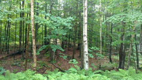 lot 62 Lou Lane Gilmanton NH 03237