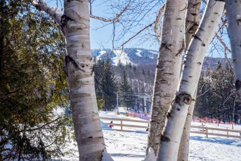 48 Mountain Reach Mews Road Stratton VT 05155
