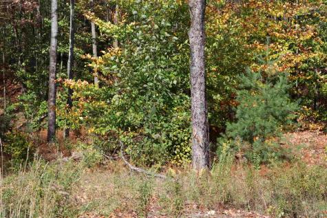 Lot 4 Shepherd's Way Underhill VT 05489