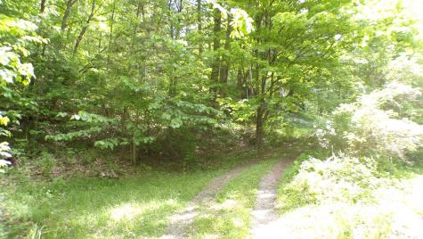 500 Hidden Valley Road Pownal VT 05261
