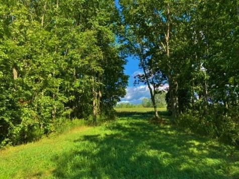 Lot # 2 Terrapin Lane Alburgh VT 05440