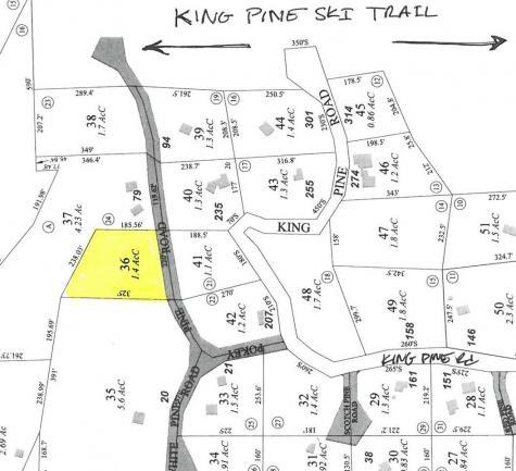 Pokey Pine Madison NH 03849