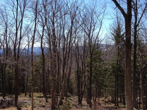Lot #2 Woodsman Road Extension Dover VT 05356