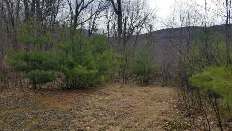 Lot 1 Pegwood Road Campton NH 03223