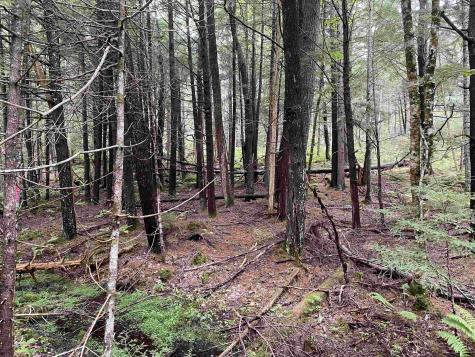 Deer Run Park Danbury NH 03230