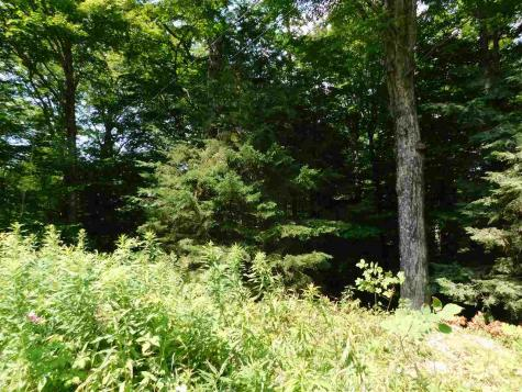 Lot 4 Jamie Lane Winhall VT 05340