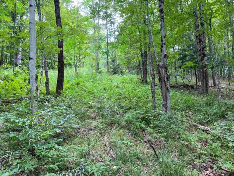Lot 3 TAC Heights Moretown VT 05660