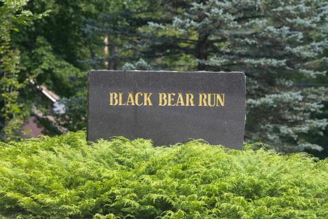 463 Black Bear Run Stowe VT 05672