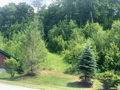 16B Winterberry Heights Road Stratton VT 05155