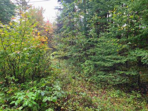 Moose Trail Bethlehem NH 03574