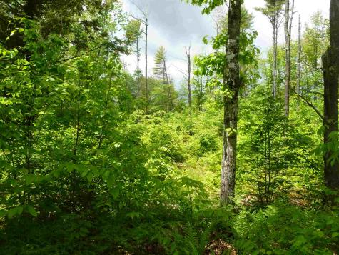 Map 4 Lot 2 Garney Brookfield NH 03872