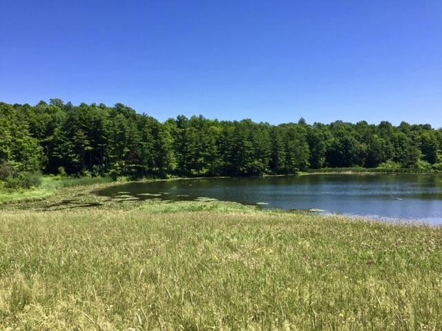 Lake Benson VT 05731