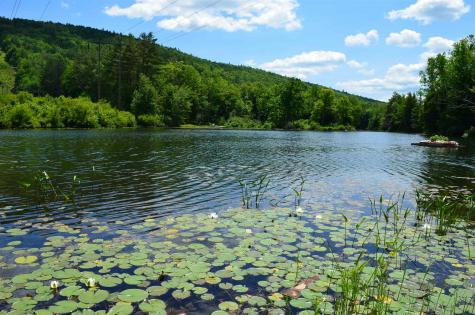 109 Fishing Access Road Ludlow VT 05149
