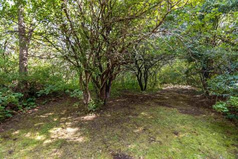 513 Shelburne Hinesburg Road Shelburne VT 05482