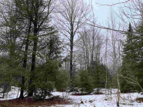 Mountain Estates Drive Hyde Park VT 05655
