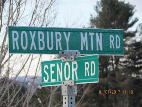 1037 Roxbury Gap Road Warren VT 05674