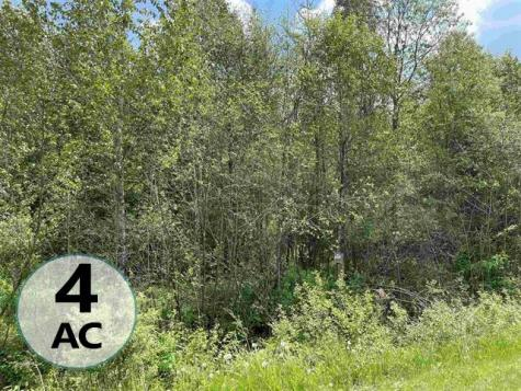 Lot #4 Waterford Hollow Lane Waterford VT 05819