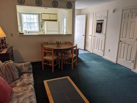 13804 Riverside Townhouses Road Manchester VT 05255