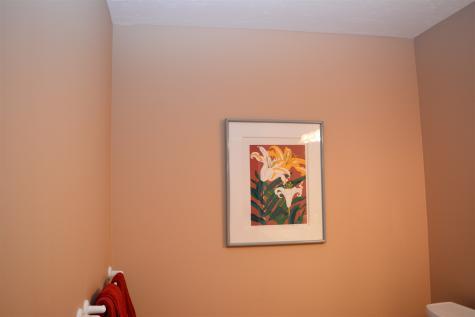 29 Hummingbird Hill Grantham NH 03753