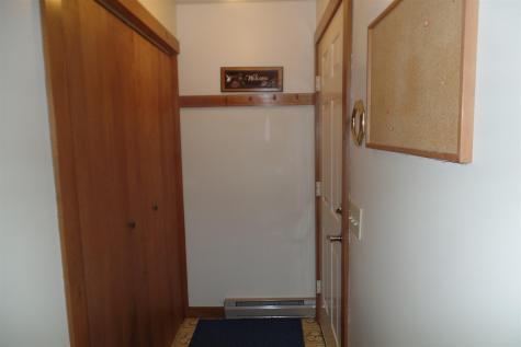45 Platinum Plain Barre Town VT 05641