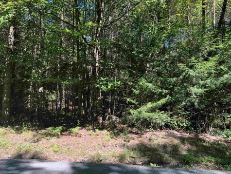 12 Winding Wood Road Springfield NH 03753