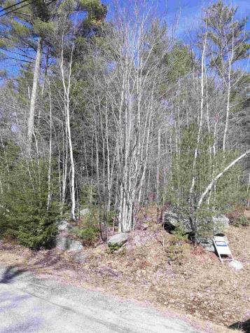 Lot 8 Coventry Sunapee NH 03782