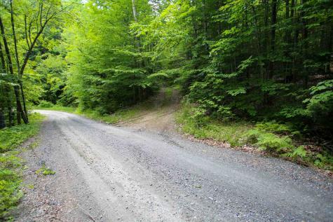 506 Devils Washbowl Road Moretown VT 05660