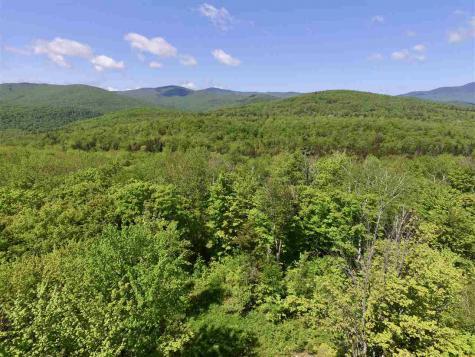 1480 Prickly Mountain Warren VT 05674