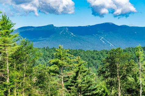 Stowe Hollow Stowe VT 05672