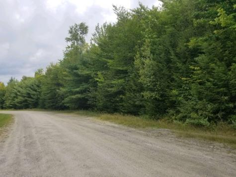 lot 35.18 Wilson Heights Road Bethlehem NH 03574