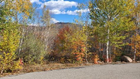 Ledge View Drive Bartlett NH 03812